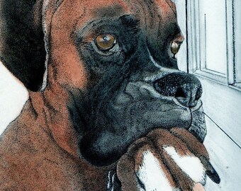 Boxer-Created by PamelasAbstractLife