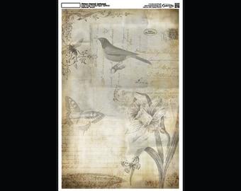 "Nature Journal - Collage Paper - 11"" x 17"" - CLPR120 -  by StudioR12"