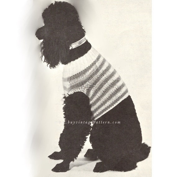 Vintage Dog Sweater Knitting Pattern In Instant Download Etsy