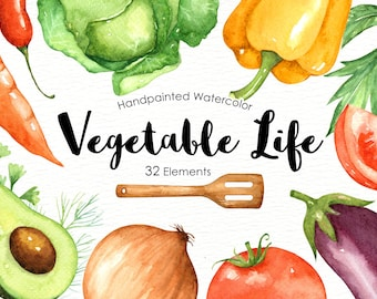 Vegetables Life Watercolor Cliparts Veggies Vegetable Clip Art Organic Culinary Clipart Commercial Use Digital Download