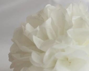 1 Tissue Paper Flower - Birch - All sizes - Party decoration - Princess Party - Paper Pom Poms - Wedding set - Birthday decorations