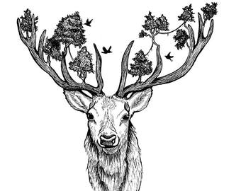 Deer pen and ink drawing, art print illustration of a deer with trees in its antlers, black and white
