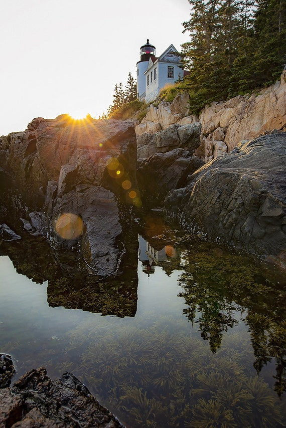 Bass Harbor Sunset Reflection