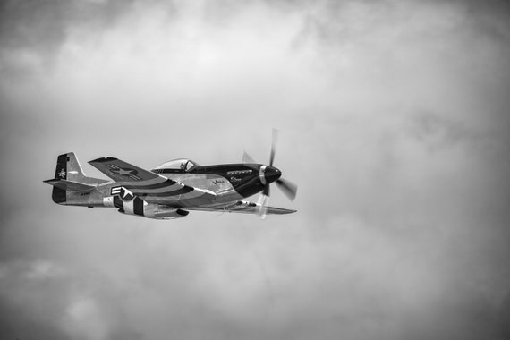 P-51 Quicksilver (Photography)