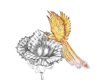 Pointillism drawing of mystical Hummingbird