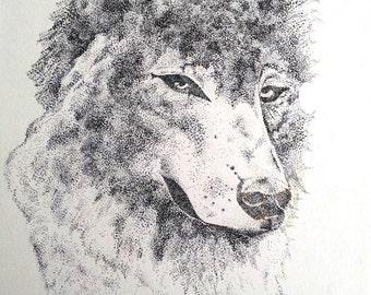 Pointillism illustration of a Wolf