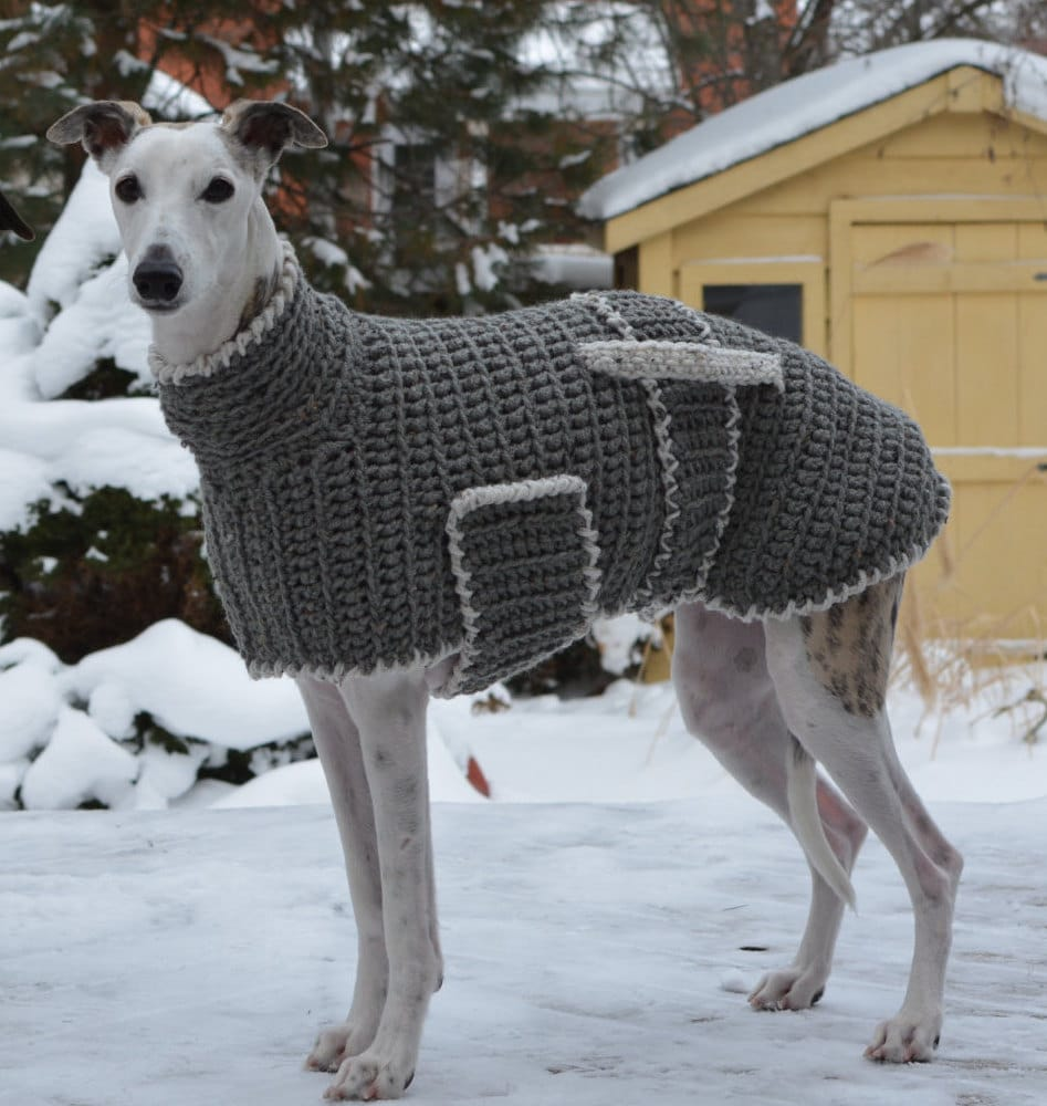 Greyhound Sweater Greyhound Coat Crochet Dog Sweater Grey Etsy
