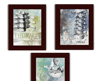 3 Part Watercolor Spine Chiropractic Therapy Print