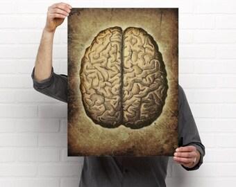 Vintage Brain Print