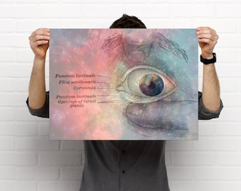 The Human Eye Eyecare Optometry Artwork