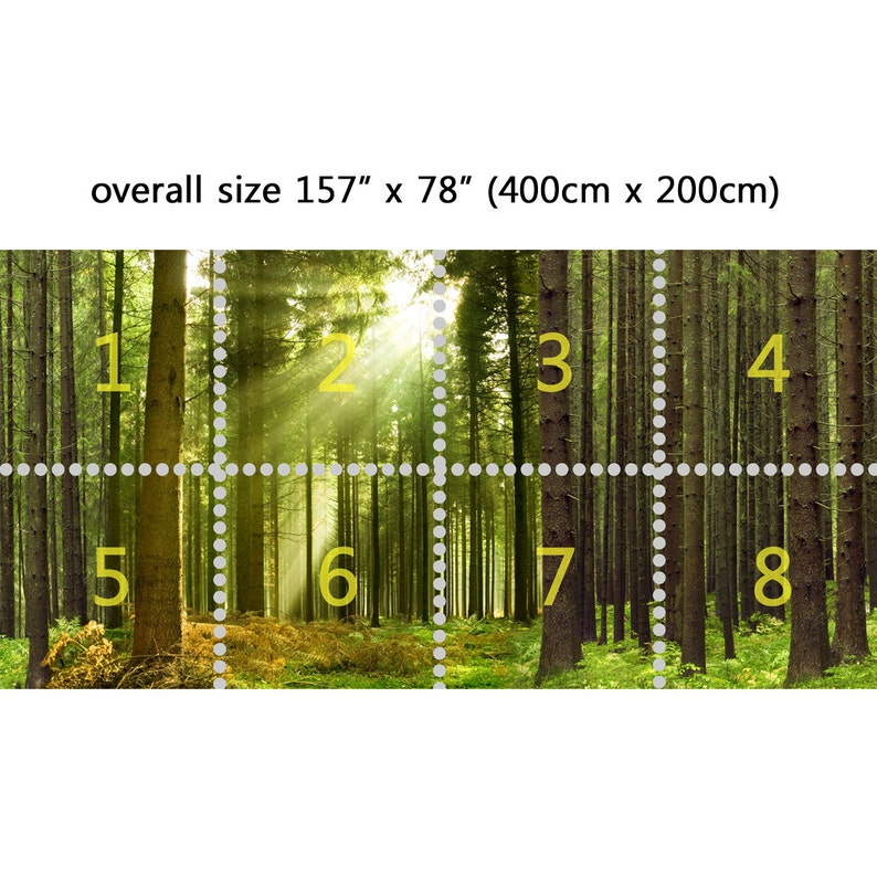 Wall Mural Life in the Woods Peel and Stick Repositionable Fabric Wallpaper for Interior Home Decor