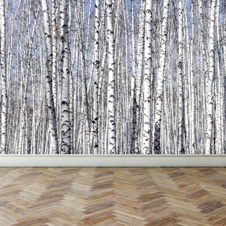 Murales Per Interni Casa.Parete Murale Bianco Betulle Buccia E Bastone Riposizionabile Etsy