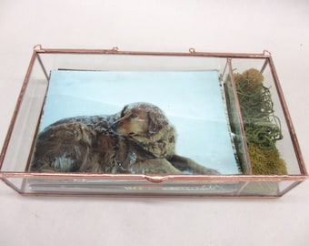 """5 or 6 Pack 5x7 with 1.5"""" USB Section - Standard depth of 1.5"""" Glass Photo Box with USB compartment"""