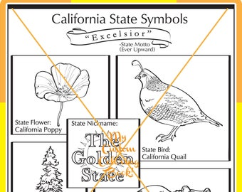 California State Symbol Coloring Page Download