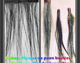 1 purchased = 1 available, Ribbon burned peacock feathers