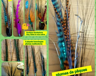 3 branches with multicolored feathers