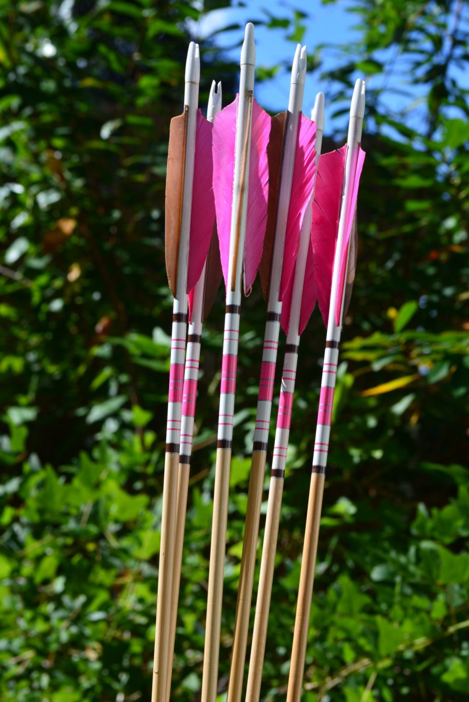 Archery Arrows Wood Arrows Pink And Brown Crested