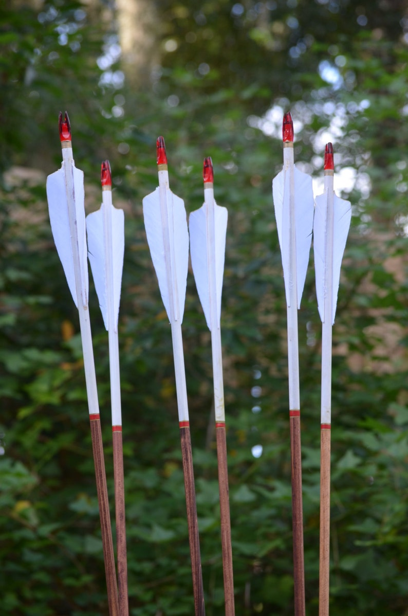 Archery Arrows wood archery arrows set of 6 white dipped image 0