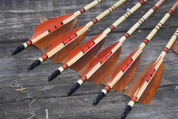 Archery arrows, wood arrows, Autumn brown and red arrows