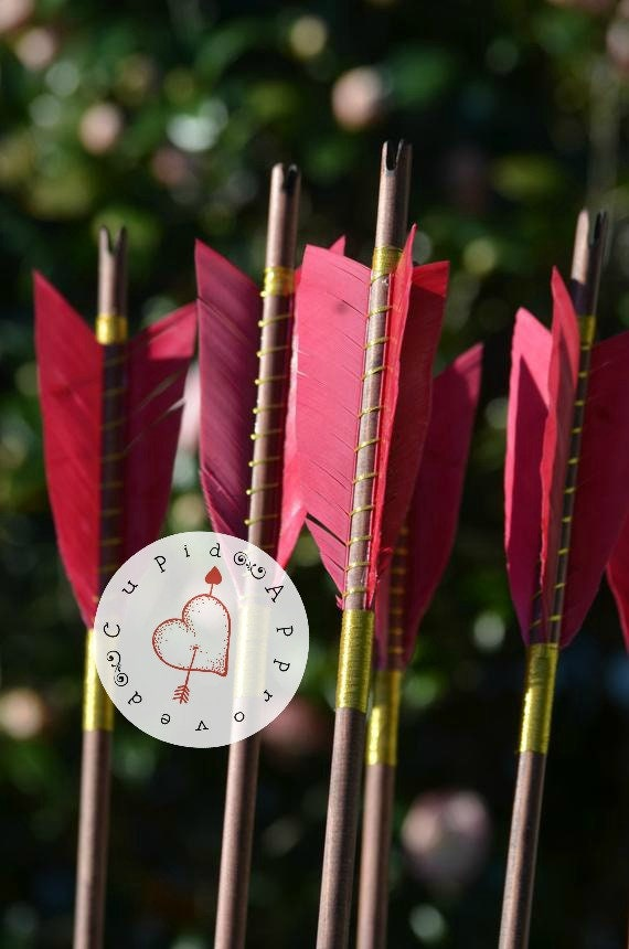 Archery Arrows, Medieval style wood arrows, set of 6 self nocked arrows, red and gold