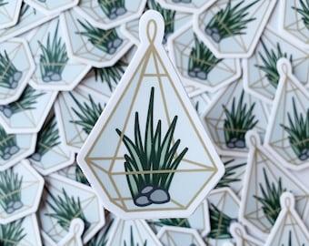 Air Plant Terrarium Sticker - Plant Sticker - Die Cut Plant Sticker