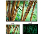 Glow in the Dark Canvas Wall Art - Spring Green Bamboo Forest Canvas Art Print - Ready to Hang
