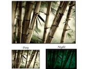 Glow in the Dark Canvas Wall Art - Bamboo Tree Forest feng shui Canvas Art Print - Ready to Hang