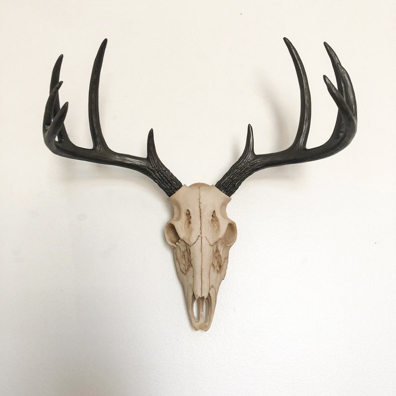 ANY COLOR Faux Deer Skull Wall Hanging // Faux Taxidermy // image 0