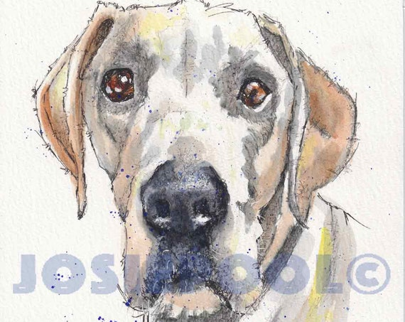CUSTOM Pet Portraits. Ink and Wash Painting. FREE Post in UK. Ink Drawing.  Pet Illustration. From your photo. Pet Art. Wall Art. Artwork.