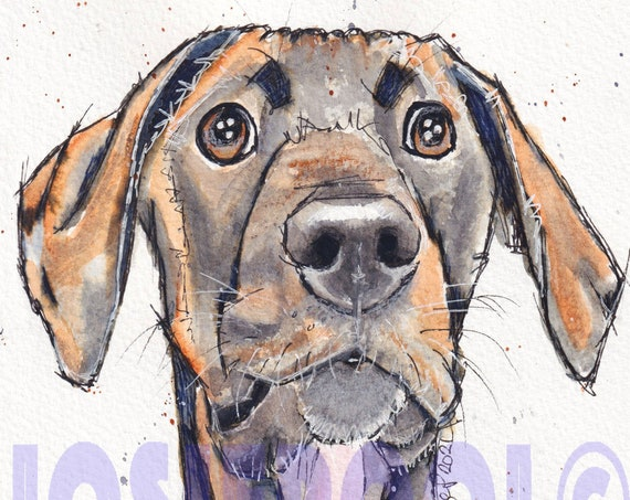 GREAT DANE PRINT of Watercolour Painting, Art Gift, Animal Lover, Illustration, Puppy Dog Portrait, Wall Hanging, Pet Memory, Picture.