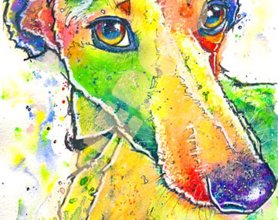 WHIPPET PRINT of Original Watercolour Dog Painting. Watercolor Art Picture  of Sight Hound Lurcher Pup  by Josie P.