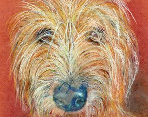 LURCHER PRINT of Original Pastel Dog Painting Art Picture Sight Hound Pup by Josie P.