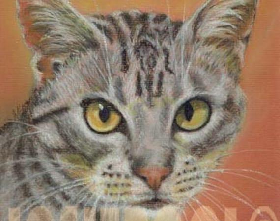 CAT PRINT of Original Pastel Painting Drawing Ocilot Art Artwork by Josie P.
