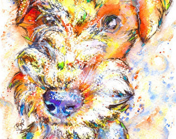 LAKELAND Terrier Picture Print of Original Watercolour Watercolor Dog Painting Hound Art Gift Artwork Pup by Josie P.