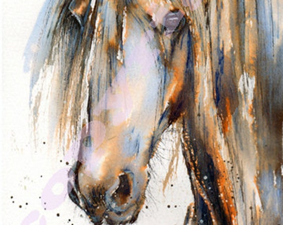 HORSE PRINT of Original Watercolour Painting Watercolor Mare Stallion Pony Animal Picture Art by Artist Josie P.