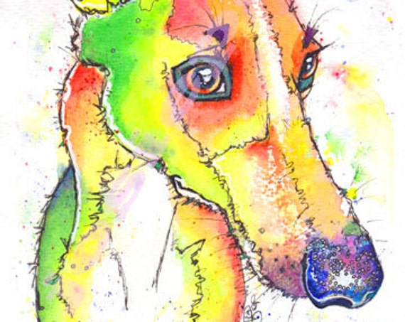 WHIPPET PRINT  Picture Lurcher Greyhound Dog Painting of Original Watercolour Painting Watercolor Animal Hound Sighthound Art by Josie P