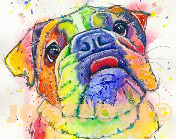 BULLDOG PRINT Picture From Original Watercolour Dog Painting Puppy Picture Watercolor Art Artwork Gift by Josie P.