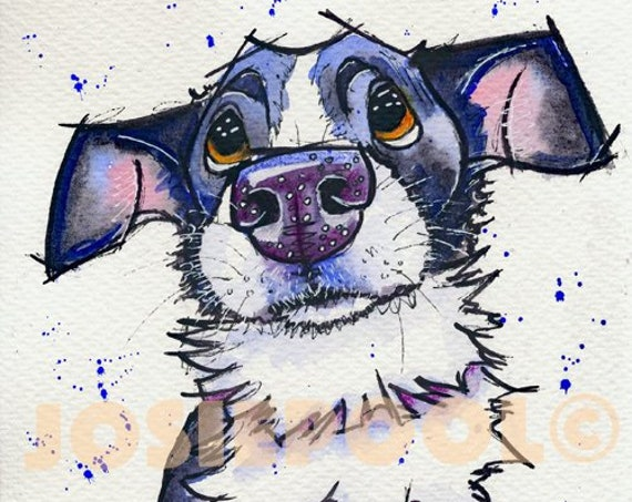 CARTOON PRINT of Border Collie from Original Watercolour Watercolor Dog Painting Art Picture Pup  by Josie P. 3 sizes available.