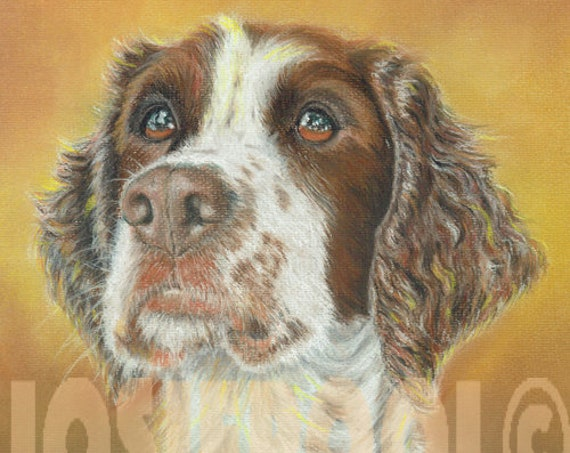 SPRINGER SPANIEL PRINT of Original Pastel Dog Painting Drawing Art Picture Hound Pup  by Josie P.