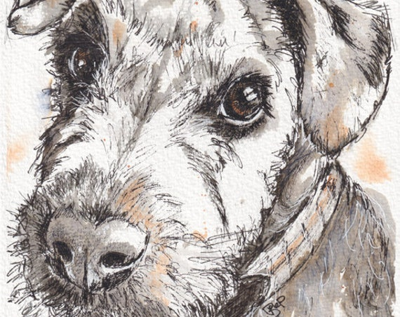LAKELAND TERRIER Print. Painting. Dog Picture. Pet Lover. Illustration. Ink & Wash. Pet Portrait. Animal Picture.