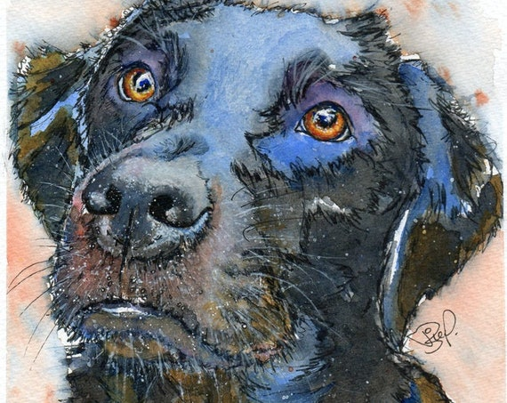 Black LABRADOR PRINT Retriever DOG Puppy of Original Watercolour Painting Picture Watercolor Animal Hound Picture Art by Josie P.