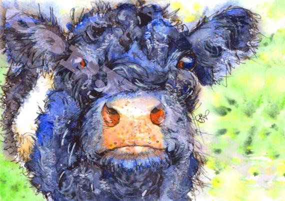 BELTIE PRINT of Original Watercolour Scottish Calf Cow Cattle Scotland Picture Painting by Josie P