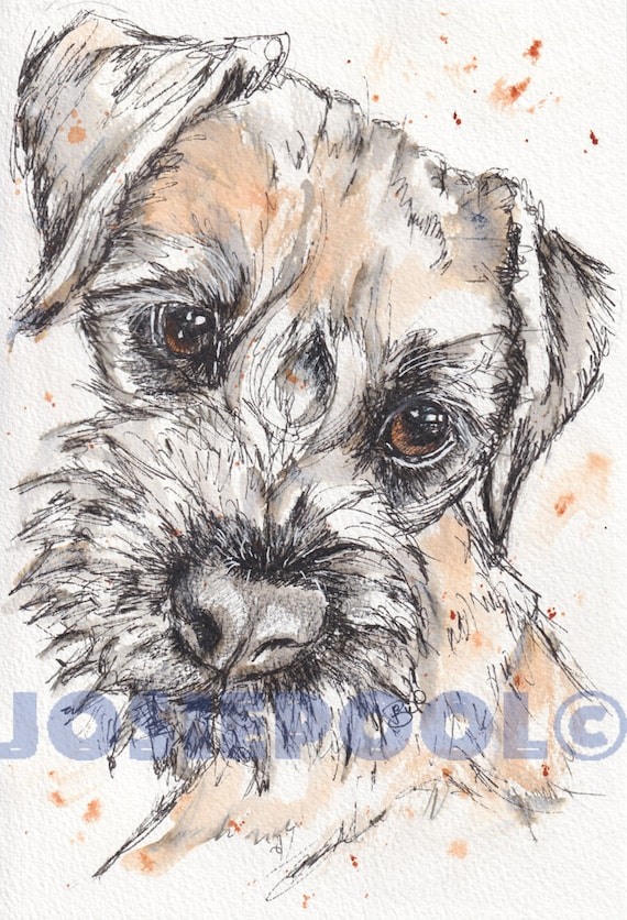 BORDER TERRIER Print. Painting. Dog Picture. Pet Lover. Illustration. Ink & Wash. Pet Portrait. Animal Picture.