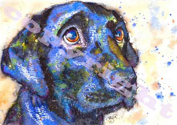 Black Labrador Retriever Dog Puppy Print of Original Watercolour Painting Picture Watercolor Animal Hound Picture Art by Josie P.