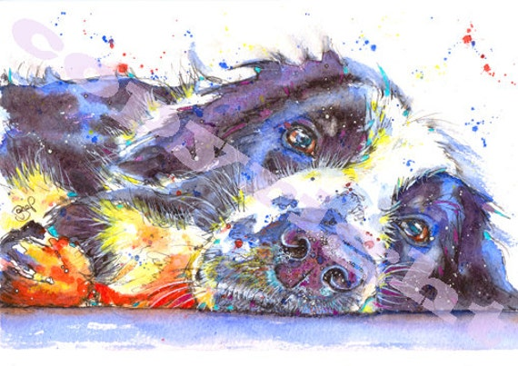 BORDER COLLIE PRINT Dog Sheepdog Picture Print of Original Watercolour Watercolor Picture Puppy Painting by Josie P.