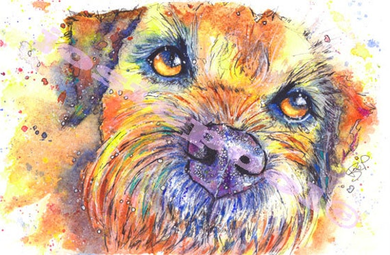 BORDER TERRIER Print of Original Watercolour Painting Dog Picture by Josie P.