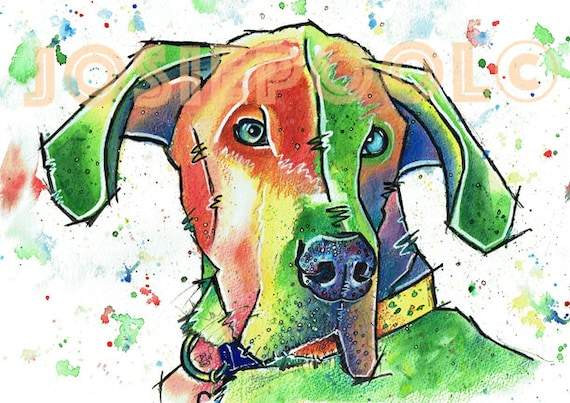 Great DANE PRINT Picture of Original Watercolour Painting Watercolor Hound Dog Painting Pup Puppy Animal Artwork Gift Art by Josie P.