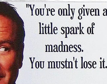 Robin Williams Quotes movie poster Fridge Magnets & Keyring New You're Only Given A Little Spark Of Madness
