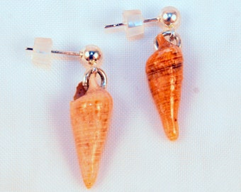 Sea shell earrings, Hand picked and created, Shells from Panama City Beach, Florida, Seashell jewelry, post earrings