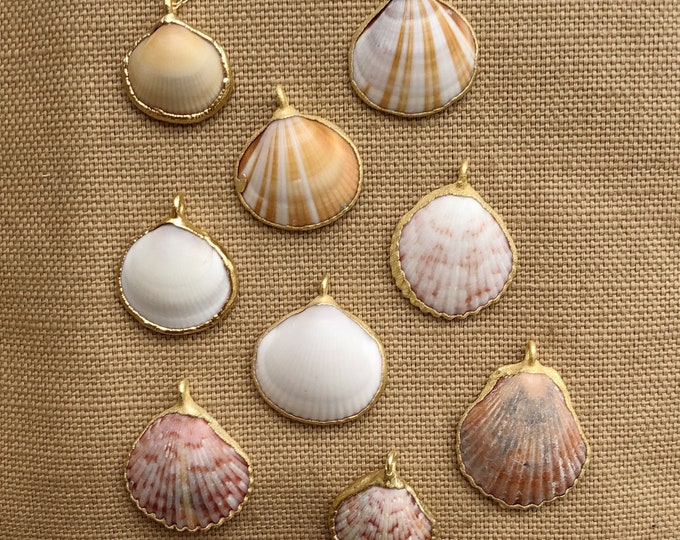 Dainty Golden Seashell Charm Necklace